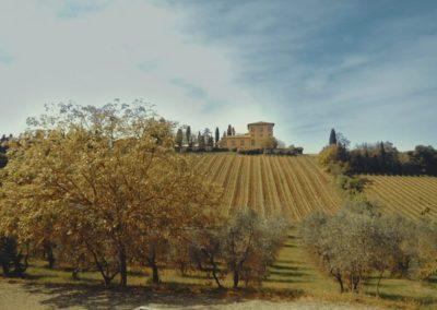 Trafalgar Villa Machiavelli