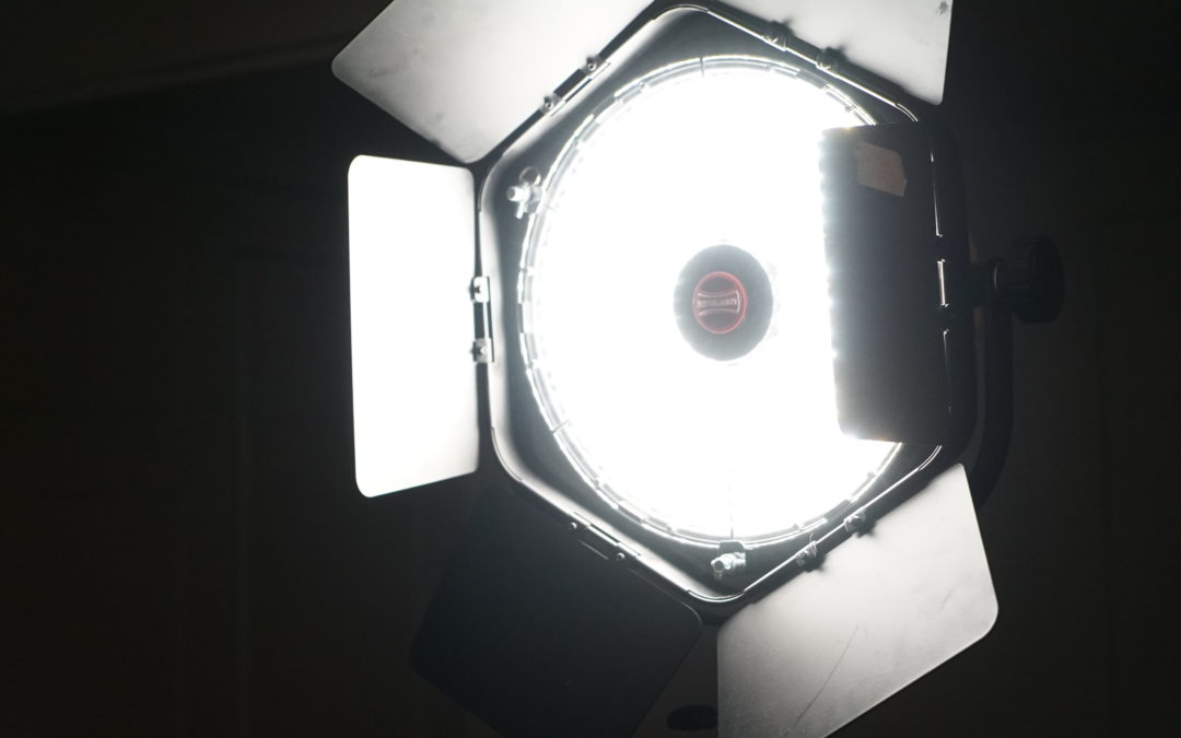 GripUp's Rotolight Anova Eco Flood – Our Staff Review